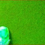 """""""Shoe Green"""" by oopsfotos"""