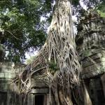 """Angkor Wat, Cambodia"" by Droopy"