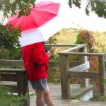 """A Rainy Summer Day"" by karolsstuff"