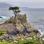 """Pacific Ocean With Lone Cypress"" by BeautifullyScene"
