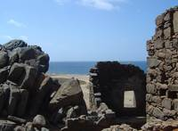 Ancient Tropic Ruins I