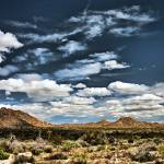 """Joshua Tree National Park Panorama"" by johncorney"