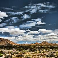 """Joshua Tree National Park Panorama"" by John Corney"