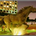 """Mustangs of Las Colinas at Night"" by SanketBakshi"