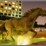 """Mustangs of Las Colinas at Night"" by SanketBakshi"