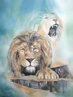Lions of Grace and Truth