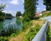 Snohomish River Walk