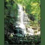 """""""Adirondack waterfall"""" by chow5325"""
