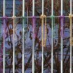 """""""Mardi Gras Fence"""" by DanielleParker"""