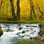 """McGee Creek"" by jebrunner58"