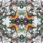"""Leopard Butterflies - Photo Quilt"" by marshacarson"