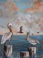 LOUISIANA  PELICANS   SOUTHERN ART