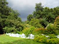 White Picket Fence Garden  I