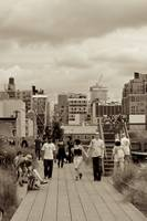 The High Line_ New York City_ USA15158007114357295
