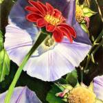 """Park Arter_9x12 - Morning Glory Delight - 2010"" by park"