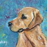 """Yellow Lab"" by paintingsbygretzky"