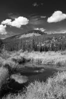 Rocky Mountain BW
