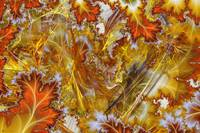 Autumn Mania Layered Fractal