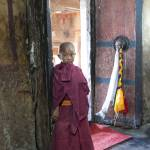 """""""Little monk in Thiksy Gompa Temple"""" by DXB013"""