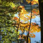 """Lakeside Color"" by KatesGrace"