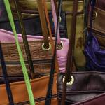 """Purse Choice"" by WilshireImages"