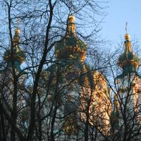 church and trees Art Prints & Posters by Alena Seryodkin