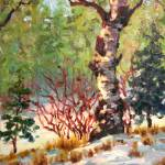 """Impressionist Plein Air Painting ""Aspen in Winter"""" by kevinmccain"