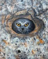 Owl in Tree Painting