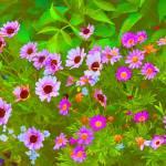 """Pink Flowers"" by DaveScott"