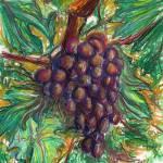 """Grape"" by Thalassinos"