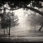 """Black and White Mist"" by angelstudio54"