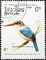 Stork-billed kingfisher bird stamp.
