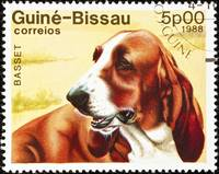 Basset dog stamp.