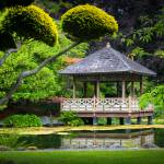 """Japanese Gazebo"" by Inge-Johnsson"