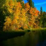 """Sierra Pond"" by jebrunner58"