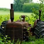 """One on Every Prairie Farm"" by iocchelli"