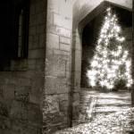 """Merry Xmas"" by __Olga__"