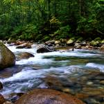 """Lynn Rapids"" by sandymaclean"