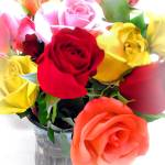 """Sweetest Day Roses"" by jbjoani2"