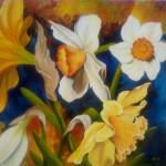 """Daffodil Delight"" by karendukes"