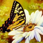 """Madame Butterfly"" by karendukes"