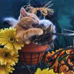 """Tabby Kitty Cat Kitten Profile,Fall Colors,Flowers"" by Chantal"