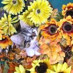 """Kitty Cat Kitten Eating Plant,Autumn Flower Basket"" by Chantal"