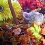 """Chin Up - Kitty Cat Kitten Napping, Flower Basket"" by Chantal"