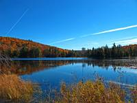 Canadian Fall,Blue Skies,Marsh,Lake Reflection Art