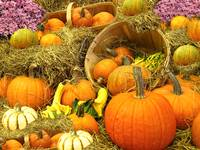 Pumpkin Arrangement,Wooden Basket,Bushel,Hay Bale