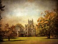 Autumn at Lyndhurst
