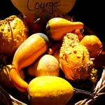 """Multicolored, Multishaped Warty Gourds, Still Life"" by Chantal"