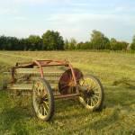 """farm_tool"" by lguerra03"