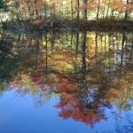 """""""Reflections III"""" by stilljustabill"""
